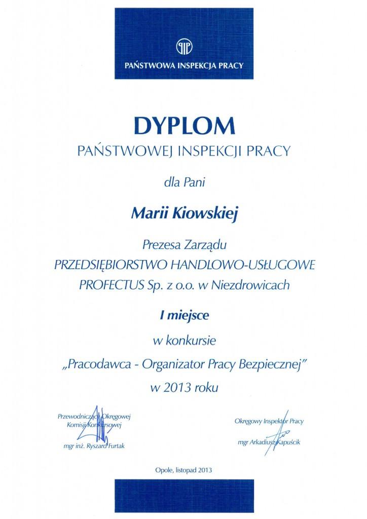 Dyplom PIP, jaki został przyznany firmie Profectus